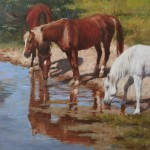 Equine Reflections-Copy