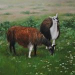 Lamas-16x20-oil-Private collection