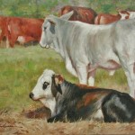 Old Mason Rd Cattle-12x16 oil on Linen