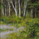 Summer Birches15x7.50-oil-SOLD