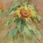 Sunflower study 3-private collection