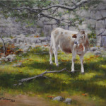 The-Curious-Calf-16x20-oil-on-linen
